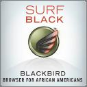 surf_blackbird